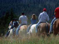 Equutrails Wilderness Adventures - Horseback Riding near Vancouver in Canada!