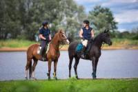 Pferdeschulze - Equestrian centre on hour south of Hamburg, ideal for your ideal riding vacation