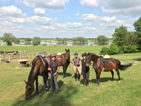 Holiday Company, B & B for Horses, Breeding Company, Training Company, Horse Trekking Station, Dude/Guest Ranch, Riding Stable, Pony Stable, B & B for Horsemen, Children's Holiday Company, Hotel for Horsemen in Wietzetze / Hitzacker/Elbe