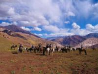 Pioneros - Riding vacations in Argentina and Chile (Andes, Pampas, Patagonia)