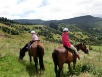 Trail riding off the beaten track in New Zealand!