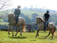 Laranjal Guest Ranch, West of São Paulo with Horseback Riding on Green Pastures and Rural Trails