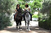 Hacienda Buena Suerte, Riding Holidays in Andalusia - Spain