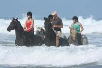 Enjoy the best beach riding in the world at Beachcomber Horse Trails, Kenton-on-sea, Eastern Cape!