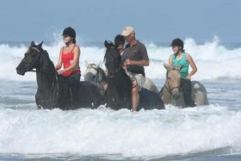 Beachcomber Horse Trails in Kenton-on-sea / Eastern Cape
