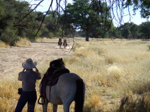 Long canters in dry riverbeds