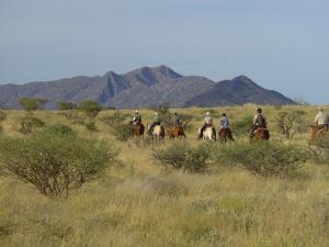 Horseriding on open savannah