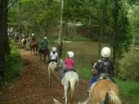 Kiah Park Holiday Camp, come for a day or stay for a week! Riding Vacations in Queensland!