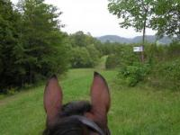 McMILLAN Farms, Campground & Horseback Riding Trails in Mosheim, Tennessee!