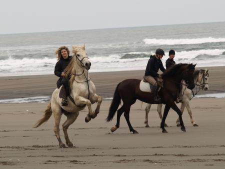 Aventuras a caballo in Lamuño / Asturias