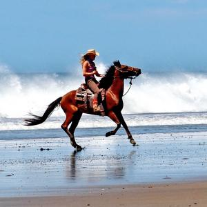 Beach Rides on Horseback in San Juan del Sur / All Regions