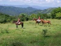 Eden Ranch - Caribbean Equestrian Retreat & Riding Center in Puerto Plata!