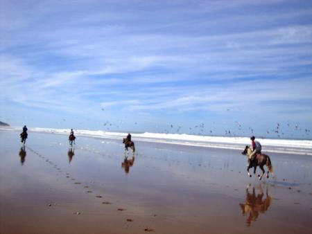 Horse-back Riding in Morocco in Essaouira, Diabat / All Regions