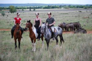 On Safari viewing wildlife
