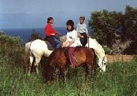 Discovering the real Greece on horseback! Holidays with unforgettable, exhilarating experiences.