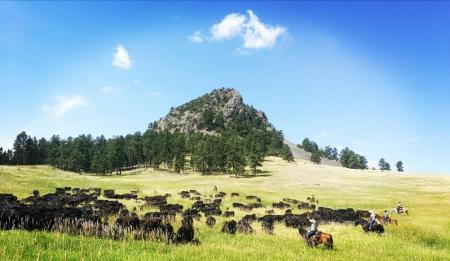 Holiday Company, Dude/Guest Ranch, Working Ranch, Cattle Ranch in Hulett