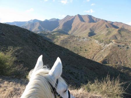 Riding Holidays at Rancho Acebuchal - Riding Vacations in