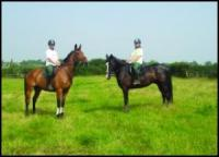 Spring House Group - Riding & English Language Holidays in Harrogate, Great Britain!