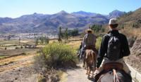Riding holidays with peruvian 'paso' horses and Inca Culture in Peru