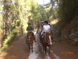 Trail riding in the Galilee
