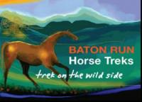 Trek on the wild side - Baton Run Horse Treks. Horse Treks and Trekking, Nelson Tasman, New Zealand