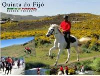 Discover the wild  Northern Portugal in Horse riding Holidays  ( Quinta do Fijó)