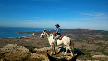 Holiday Company, B & B for Horses, Horse Trekking Station, Dude/Guest Ranch, B & B for Horsemen, Hotel for Horsemen in Betis/ Tarifa