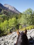 Storm Creek Outfitters -Wilderness Trail Rides in Idaho - alone or as part of your Glamping Package!