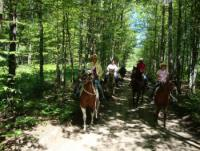 Sandy`s Stables in Bellaire, Michigan. Hourly Trail Rides, Pony Rides, Quality Horse Boarding