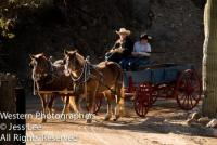 Travel back in time with a wagon or surrey training near historical Wickenburg, Arizona