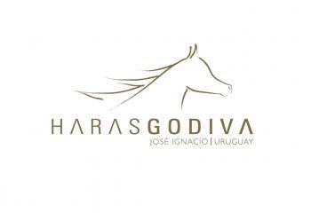 HARAS GODIVA in Jose Ignacio / All Regions