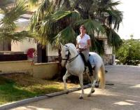 Arte Ecuestre - Lusitano Stud in Andalucia, Costa del Sol - Horseback Riding Vacations in Spain!