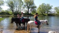 Holiday with family& horse on a idyllic estate at ELBSCHLOSS KEHNERT nearby a lake& the river Elbe