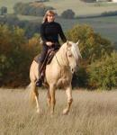 Riding and language course holidays in the sunny south-west of France, home of the musketry