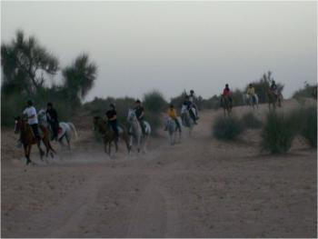 Hobbies Club U.A.E  in Dubai U.A.E / All Regions