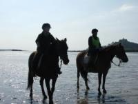 Riding Holidays for all at The Old Vicarage and Churchtown Morgans Riding Stables in Cornwall!