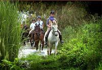 Riding Holidays - Equestrian Vacations and Dressage Training in Spain - EPONA