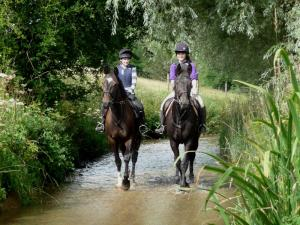 Hawnby Petal Rides