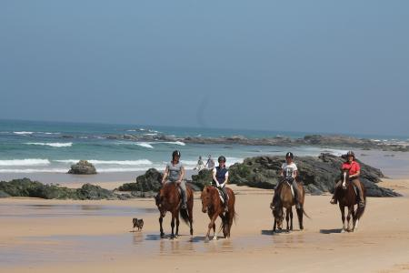 Holiday Company, Dude/Guest Ranch, Riding Stable in Vila Nova de Milfontes