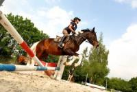 Horseback Riding Vacations in Ellwangen / Röhlingen, Baden-Württemberg, Germany!