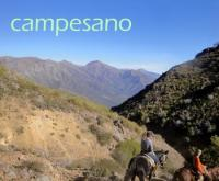 Riding & language holidays Chile - Hostal, Cottages, Hippotherapy