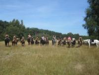 Horseback Riding Vacations in Schleswig-Holstein near North Sea, Germany!