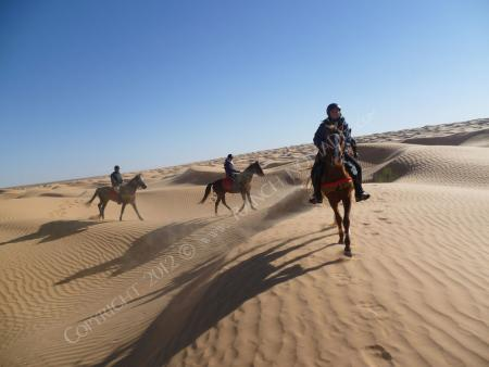 Ranch Nomade in Oasis of Ksar Ghilane, Kébili-Douz, Tunisia / All Regions
