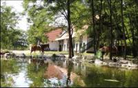 Hunnatura - Aventuras equestres en la Parque Nacional Kiskunsági en el Paraíso Equestre en Hungría