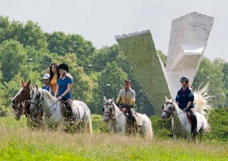 Equestrian Club 'Kraguj' in Kragujevac / All Regions
