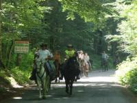 Riding holidays at only ecological country of the world - Montenegro!