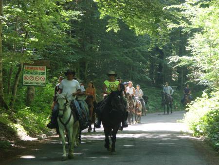 Eco-tours, Montenegro in Kolasin, Montenegro / All Regions