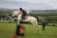 English Language Tuition - Oakwood Stables - Riding Holidays for Children in Co. Wicklow, Ireland!