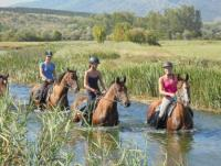 Trail riding in Croatia - Dalmatia-Trail and Plitvice-Trail