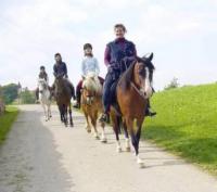Einstellplätze auf idyllischen Pferdehof in Obertaufkirchen, Bayern!